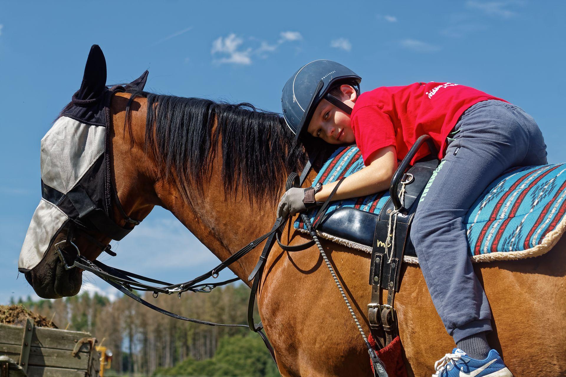 Jízdy na koních pro děti a začátečníky na voltižním sedle
